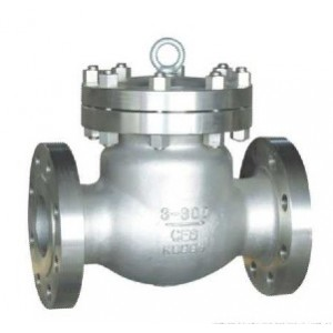 http://www.sangongvalve.com/28-137-thickbox/swing-check-valve.jpg