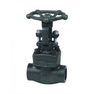 http://www.sangongvalve.com/29-121-thickbox/forged-gate-valve.jpg