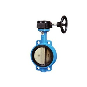 http://www.sangongvalve.com/37-132-thickbox/rubber-lined-butterfly-valve.jpg