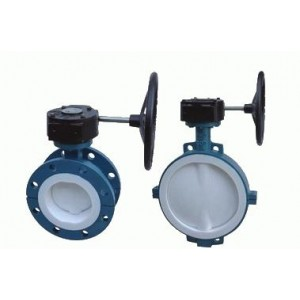 http://www.sangongvalve.com/40-135-thickbox/ptfe-lined-butterfly-valve.jpg