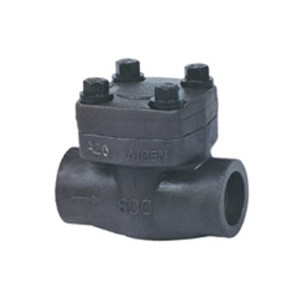 http://www.sangongvalve.com/51-151-thickbox/forged-steel-pistion-check-valve.jpg